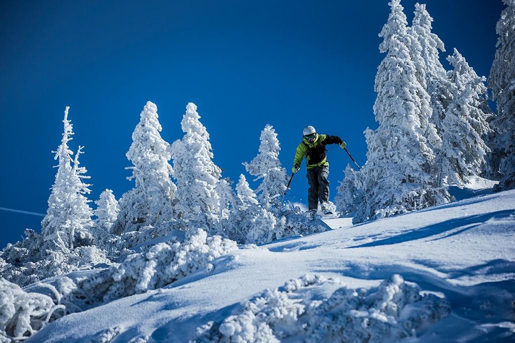 Alpen Plus Ski